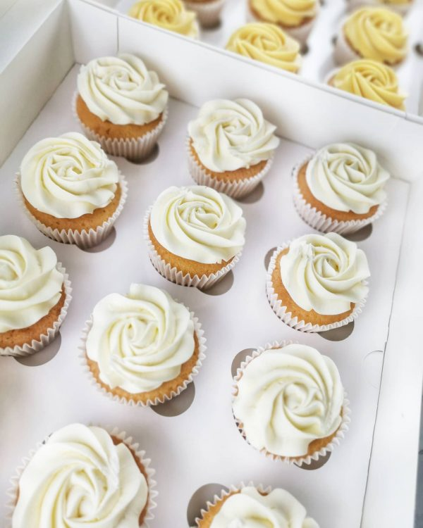 Cupcakes parties events cupcake box flavours colours